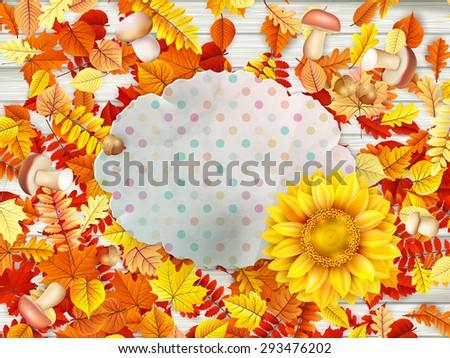 кадр цветок орехи грибы прибыль на акцию 10 Сток-фото © beholdereye