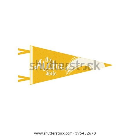 Hawaii flag pennant Vector Hawaiian Pennant cocnept design. Vintage surfing template. USA hawaii pen Stock photo © JeksonGraphics