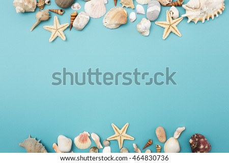 flat lay top view frame of shells of various kinds on a green blue background seashells and starf stock photo © serdechny
