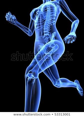 Caminhada mulher osso esqueleto raio x olhando Foto stock © Pixelchaos