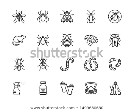 cockroach icon set stock photo © bspsupanut