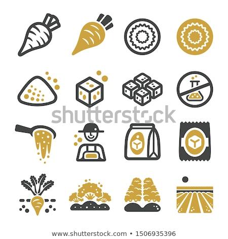 sugar beet icon set Stock photo © bspsupanut