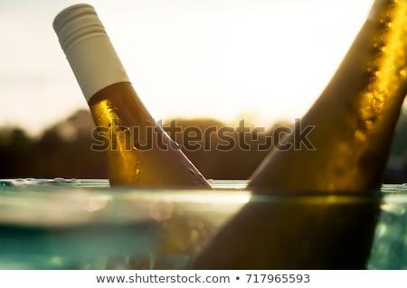 Butelki białe wino lodu wiadro strony człowiek Zdjęcia stock © dashapetrenko