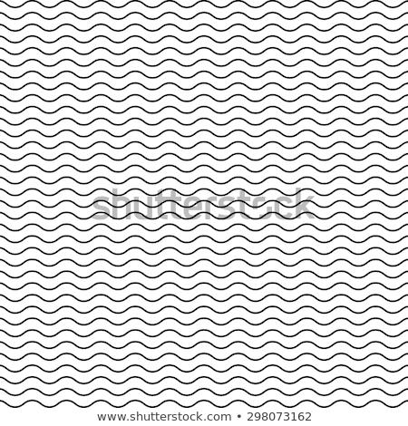 Wektora bezszwowy czarno białe falisty linie wzór Zdjęcia stock © samolevsky
