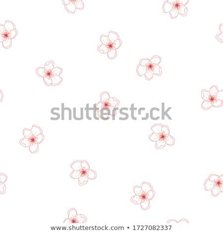 Klasszikus almafa virágok virágzik virágmintás virág Stock fotó © Anneleven