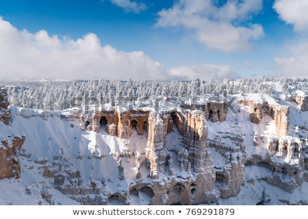 winter trees, Utah, USA Stock photo © phbcz