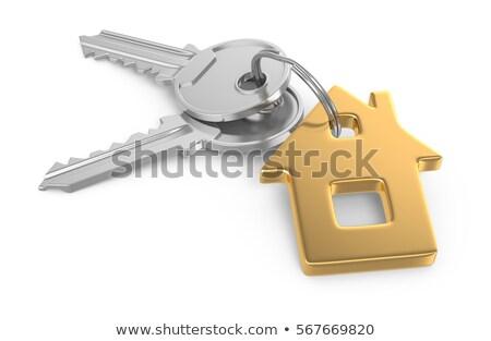 3D ev anahtar zincir 3d render Bina Stok fotoğraf © nasirkhan