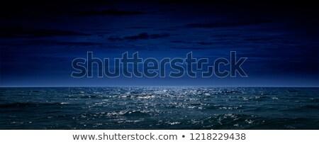 óceán éjszaka madarak repülés telihold csendes Stock fotó © Elenarts