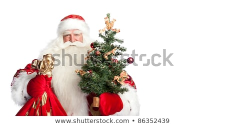 Christmas theme: Santa Claus holding christmas tree and his bag  stock photo © HASLOO
