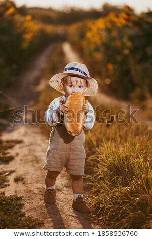 cute little smiling child with sunflowers stock photo © dashapetrenko