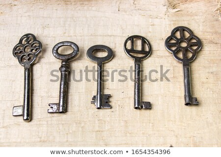 The bundle of the keys Stock photo © Traven