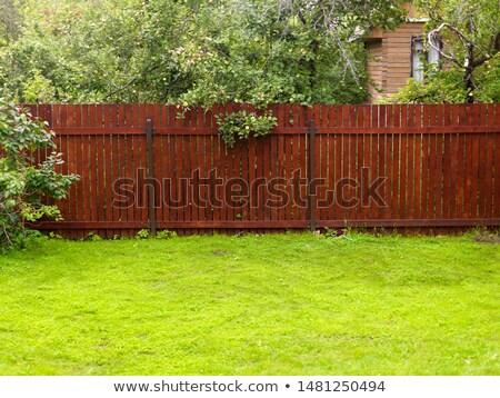 Cerca grama verde verde campo casa Foto stock © smithore