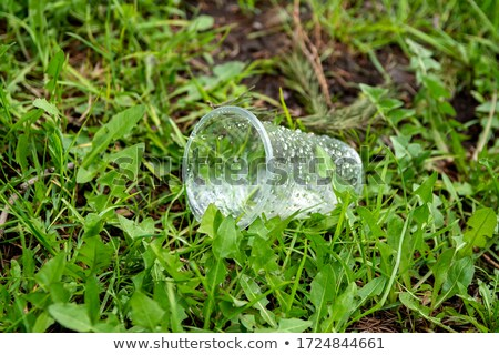Yeşil ot tek kullanımlık fincan çevre koruma Stok fotoğraf © devon