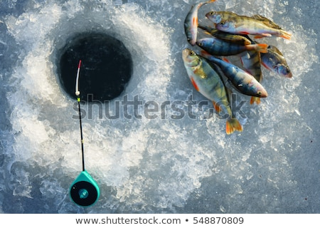 fishing on ice stock photo © stevemc