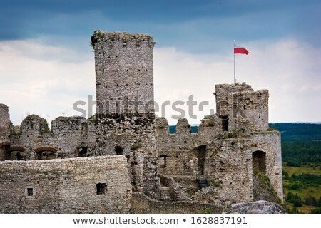 Old castle ruins in Poland in Europe Stock photo © REDPIXEL