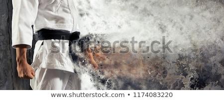 Judo ayrıntılı siluet vektör format kolay Stok fotoğraf © abdulsatarid