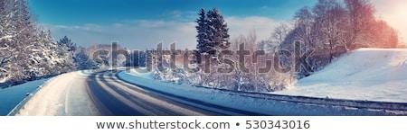 Zimą drogowego słoneczny mroźny dzień Błękitne niebo Zdjęcia stock © artush