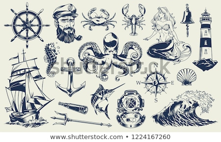 vintage nautical illustration stock photo © mikemcd