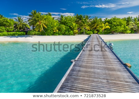 Tropical Jetty Stock photo © zhekos