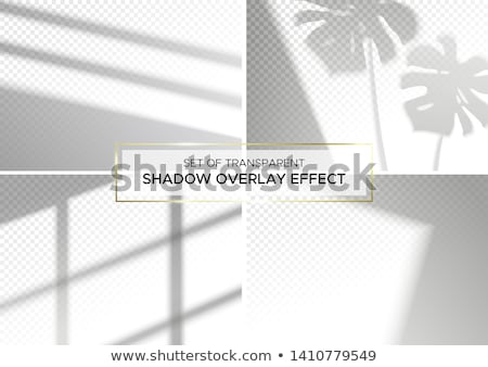 set of evctor shadow effects stock photo © orson
