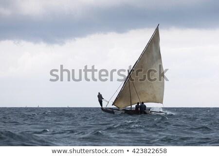 Yelkencilik tekneler balık tutma tüm birlikte Stok fotoğraf © jacojvr