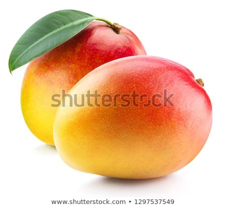 Mangue isolé blanche fruits rouge usine Photo stock © meodif