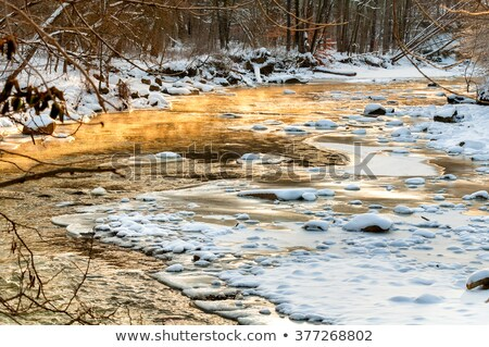 заморожены · ручей · красивой · текстуры · льда · природы - Сток-фото © ondrej83