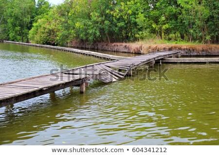 разрушенный моста быстро движущихся реке Сток-фото © ultrapro