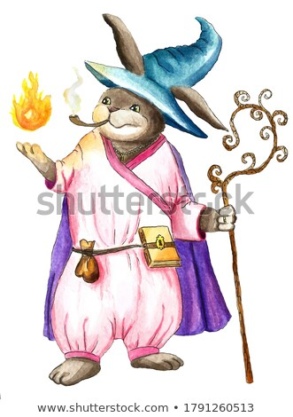wizard in pink cape with magic ball stock photo © sifis