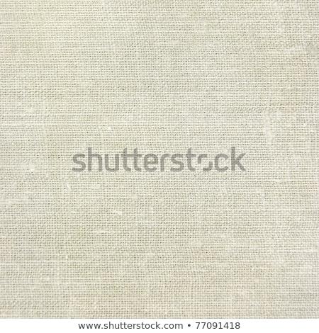 Fiber Paper Texture - Yellowish Gray stock photo © eldadcarin