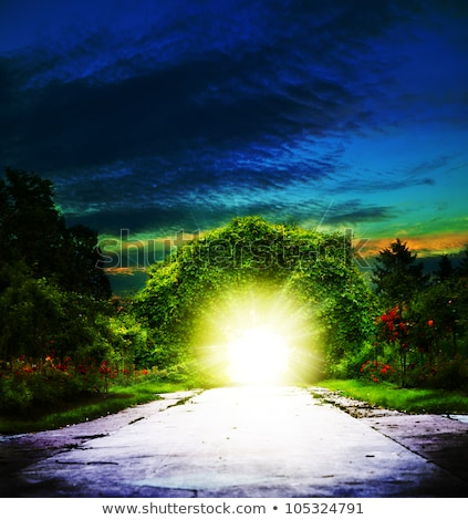 Walking to Eden. Abstract spiritual backgrounds Stock photo © tolokonov