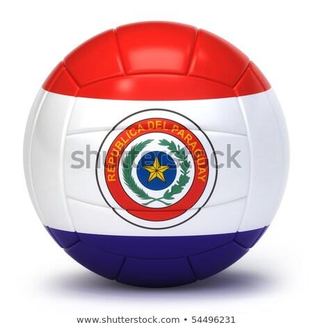 Paraguayan Volleyball Team Stock photo © bosphorus