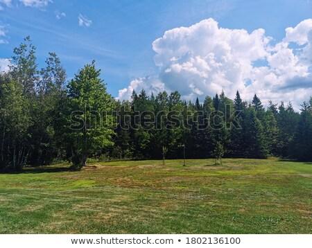 Сток-фото: красивой · пейзаж · солнце · природы · фон · пространстве