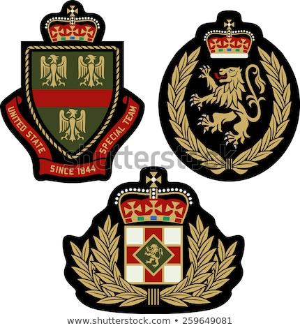 Clásico emblema placa escudo deporte educación Foto stock © creative_stock