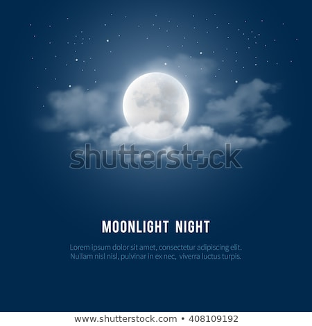 Romantic  full moon in the night sky Stock photo © shihina