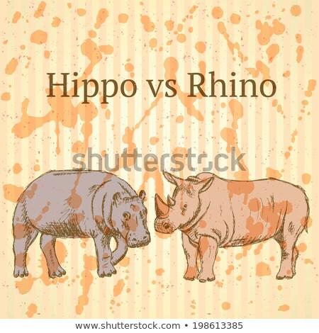 Sketch hippo vs rhino, vector seamless pattern eps 10 Stock photo © kali