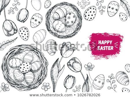 эскиз пасхальных яиц набор Vintage стиль вектора Сток-фото © kali