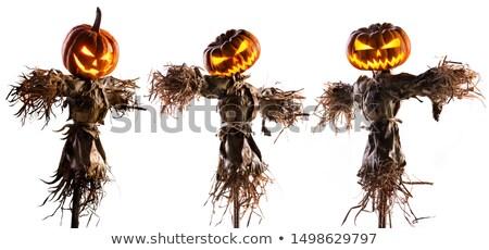 halloween · korkuluk · hasır · şapka · dekorasyon · yüz · arka · plan - stok fotoğraf © allihays