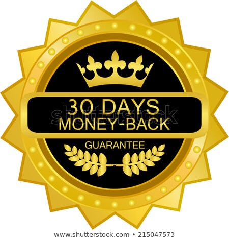 1 Month Deal Gold Vector Icon Button Stock photo © rizwanali3d