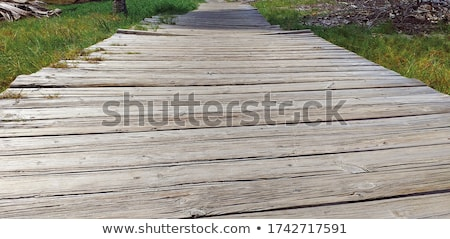 Old planks of a footbridge Stock photo © tilo