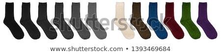 脚 · 女性実業家 · 高い · ストッキング · ハイヒール · 白 - ストックフォト © nobilior
