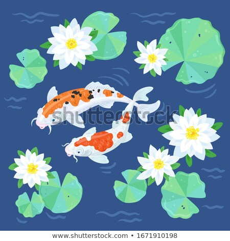 Red and black carp with flowers and petals Stock photo © ulyankin