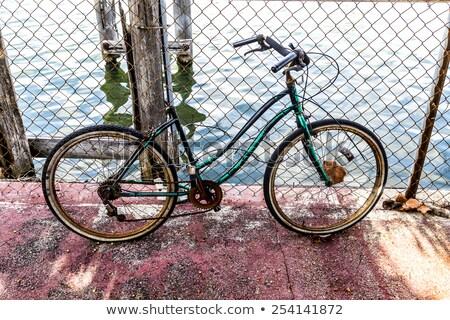 Oude rot fiets roestige hek kanaal Stockfoto © meinzahn
