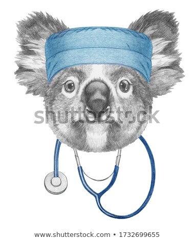 Portrait of a koala in a person's hands Stock photo © epstock