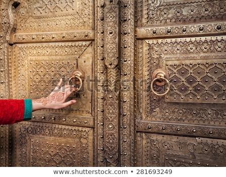 Obrazy drzwi pałac Indie twarz świat Zdjęcia stock © guillermo