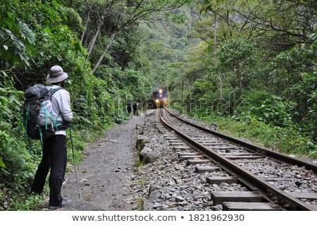 Masculino andarilho em pé ferrovia bonito Foto stock © deandrobot