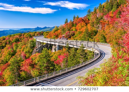 Linn Cove Viaduct Stock photo © tmainiero