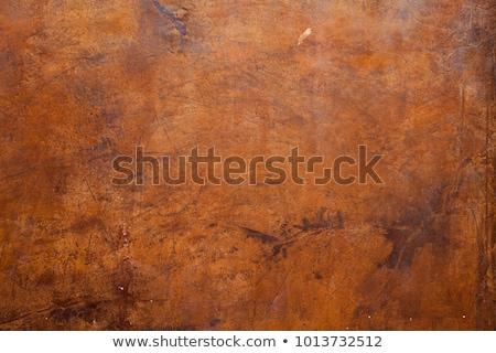 Detail of corroded metal plate Stock photo © stevanovicigor