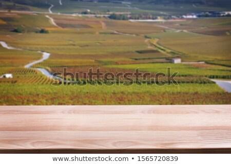 Zdjęcia stock: Ontaż · wina