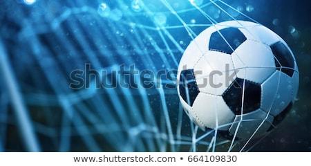 balón · de · fútbol · objetivo · neto · fútbol · deporte · fútbol - foto stock © -baks-